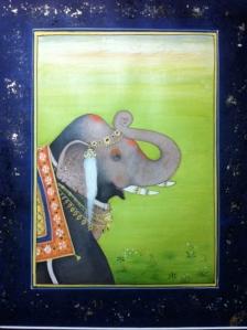 Class image Elephant