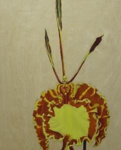 Butterfly-Orchid,-2014,-oil on board,-25x20cm copy