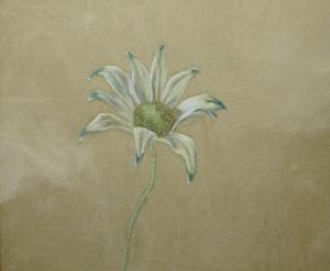 Flannel-Flower,-2014,-oil-on-board,-25x30cm copy