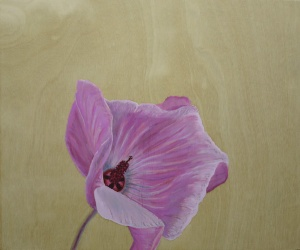 Hibiscus,-2014,-oil-on-board,-25x30cm copy