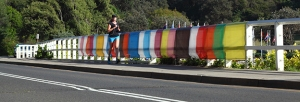 Francesca Mataraga  Banner Tamarama road view with runner print 88cm x 30cm low res